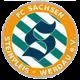 FC Sachsen Steinpleis-Werdau